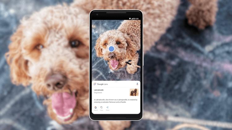 Google Lens приходит на все Android-смартфоны