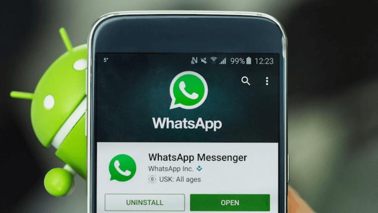 Как конвертировать видео в GIF-анимацию при помощи WhatsApp